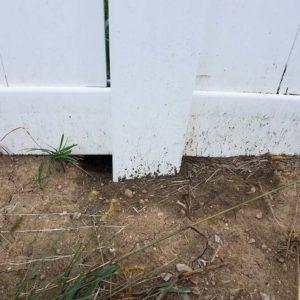 Hole under fence